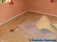 Alten Teppich entfernen und verlegen eines Vinylparketts